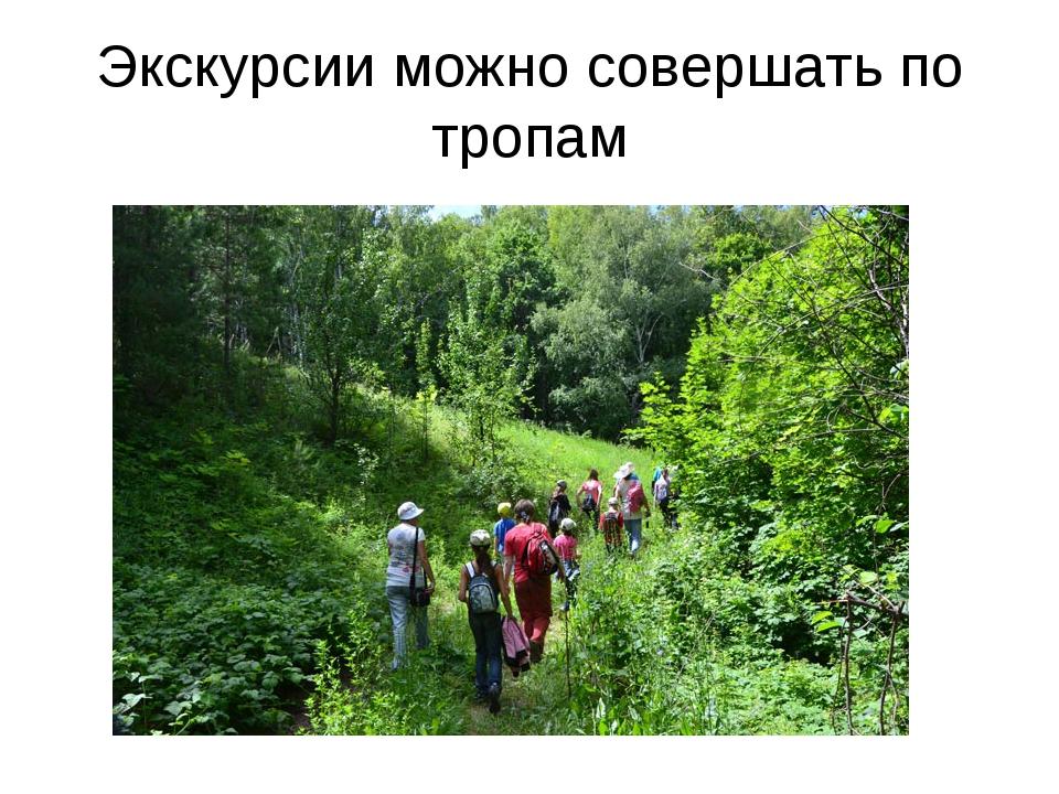 Экскурсии можно совершать по тропам