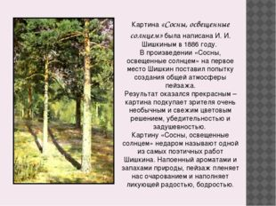Картина «Сосны, освещенные солнцем» была написана И. И. Шишкиным в 1886 году.