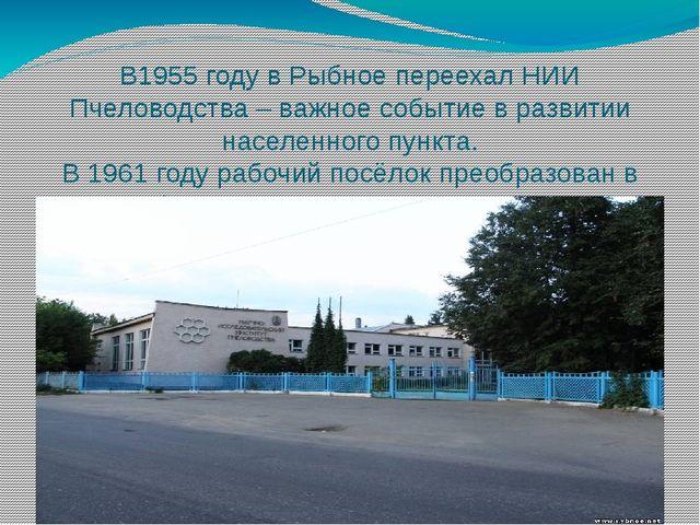 В1955 году в Рыбное переехал НИИ Пчеловодства – важное событие в развитии нас...