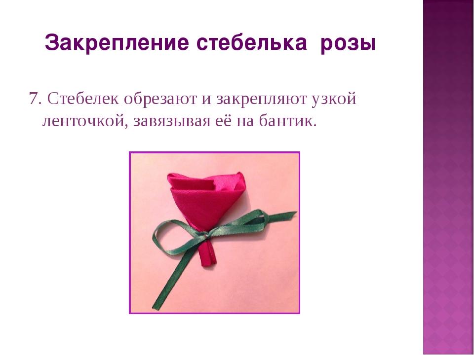 Закрепление стебелька розы 7. Стебелек обрезают и закрепляют узкой ленточкой,...