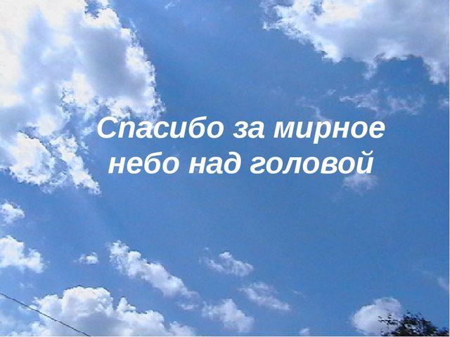 Спасибо за мирное небо над головой