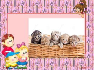 Вы послушайте, ребята, Я хочу вам рассказать; Родились у нас котята - Их по с
