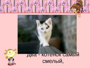 Два - котенок самый смелый,