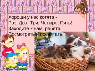 Хороши у нас котята - Раз, Два, Три, Четыре, Пять! Заходите к нам, ребята, По