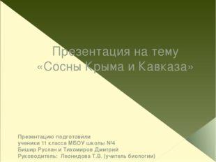 Презентация на тему «Сосны Крыма и Кавказа» Презентацию подготовили ученики 1