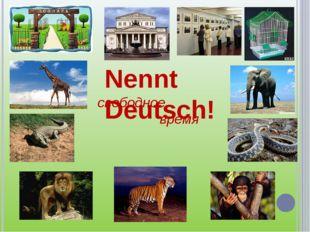 свободное время Nennt Deutsch!