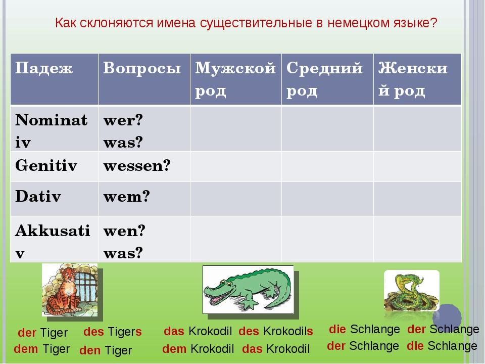 Как склоняются имена существительные в немецком языке? der Tiger des Tigers d...