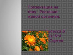 Презентация на тему : Растение- живой организм. Ученика 3 класса Б МБОУ РСОШ