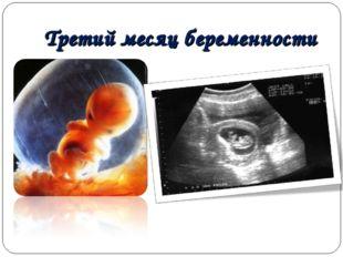 Третий месяц беременности
