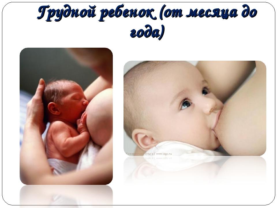 Грудной ребенок (от месяца до года)
