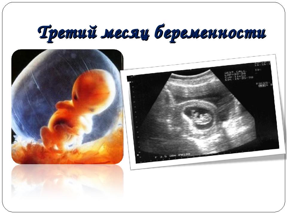 Третий месяц беременности в картинках