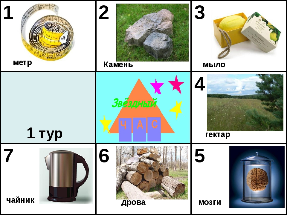 1 тур мозги мыло гектар дрова чайник метр Камень 1 2 3 4 7 6 5