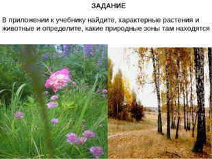 ЗАДАНИЕ В приложении к учебнику найдите, характерные растения и животные и оп