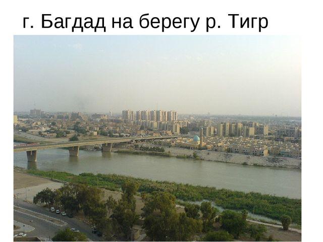 г. Багдад на берегу р. Тигр