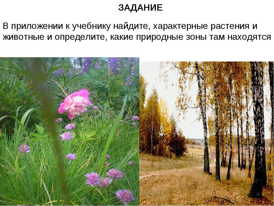 ЗАДАНИЕ В приложении к учебнику найдите, характерные растения и животные и оп...