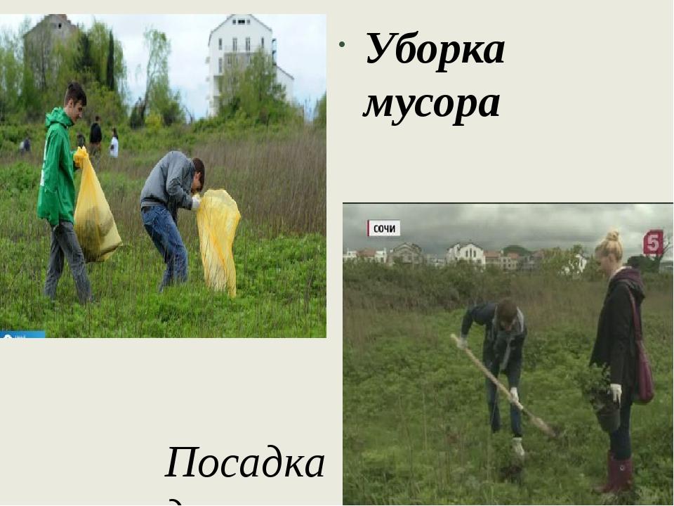 Посадка деревьев Уборка мусора