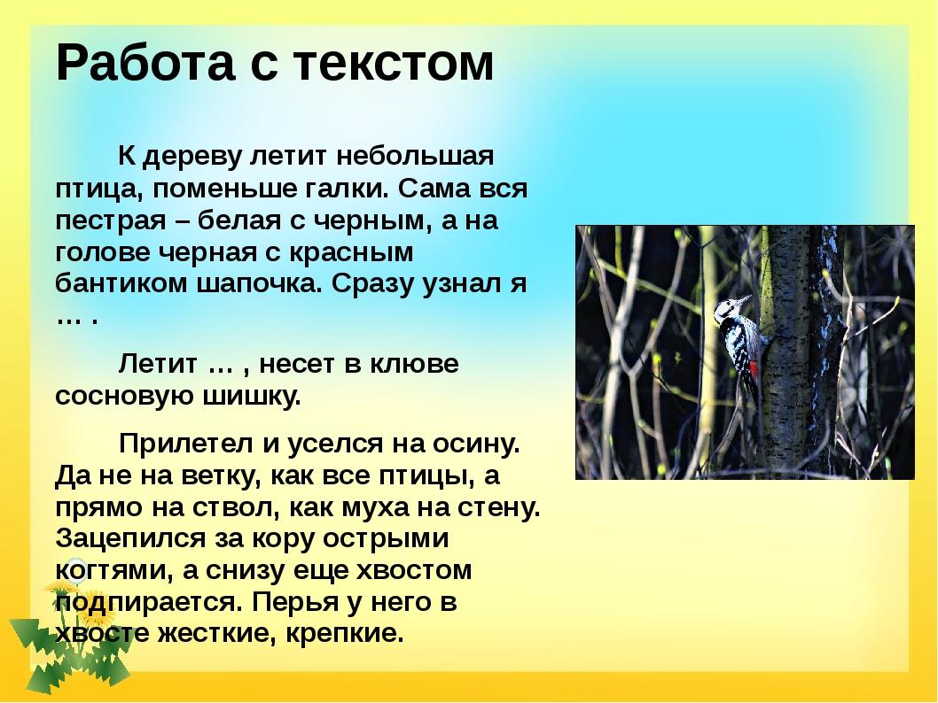 Работа с текстом К дереву летит небольшая птица, поменьше галки. Сама вся пес...