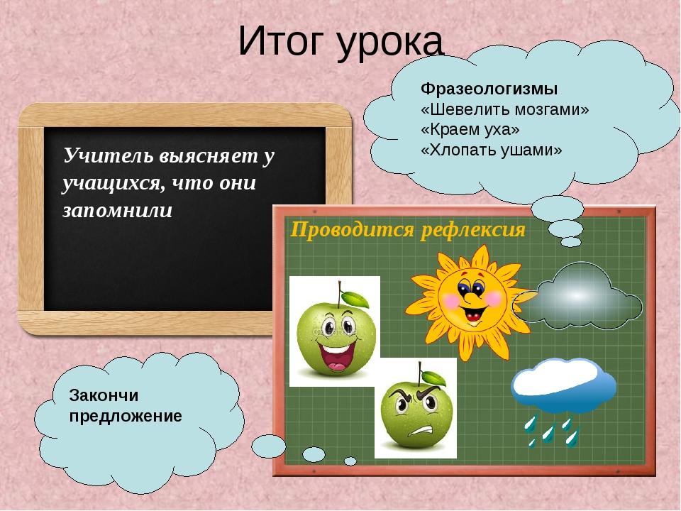 Итог урока Учитель выясняет у учащихся, что они запомнили Проводится рефлекси...