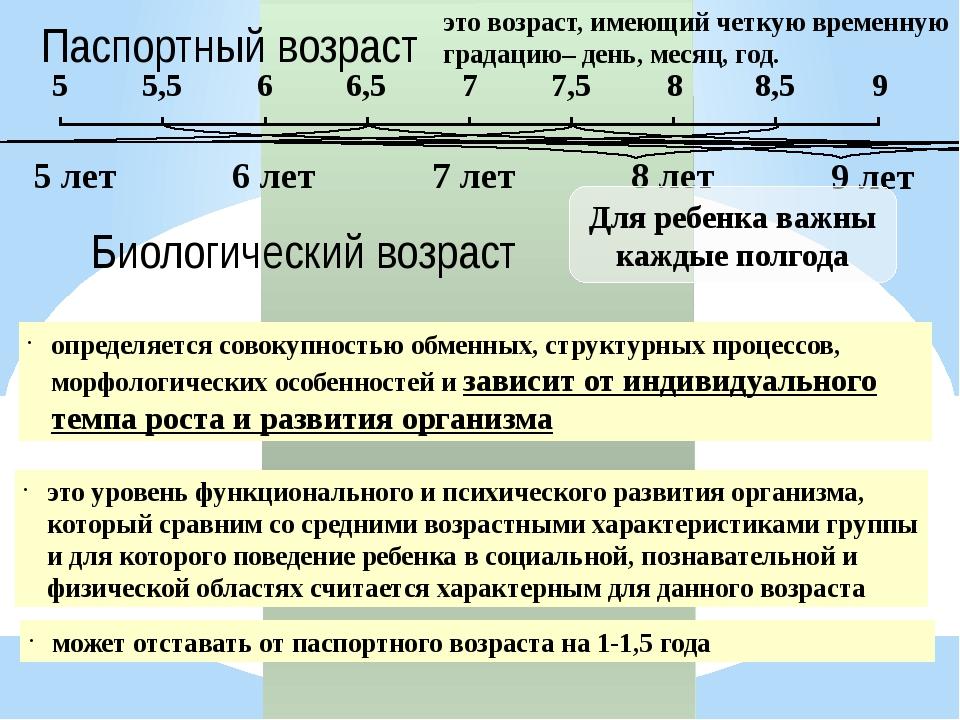 Паспортный возраст 6 лет 7 лет 8 лет 9 лет 5 лет Для ребенка важны каждые пол...