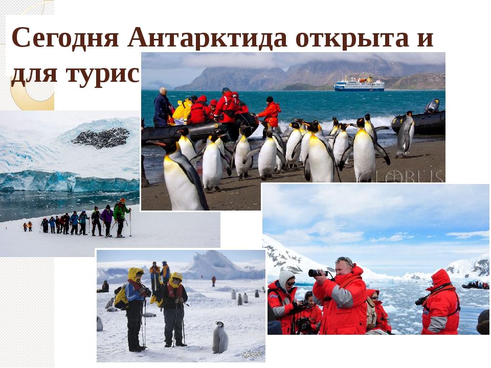 Сегодня Антарктида открыта и для туристов