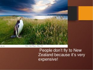 People don't fly to New Zealand because it's very expensive!