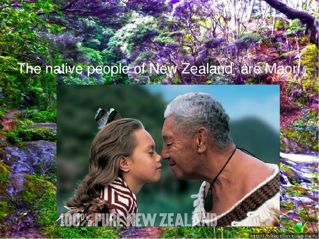 The native people of New Zealand are Maori.