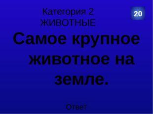 Категория 4 КУЛЬТУРА И ИСКУССТВО Этот символ России переписывали два раза. В