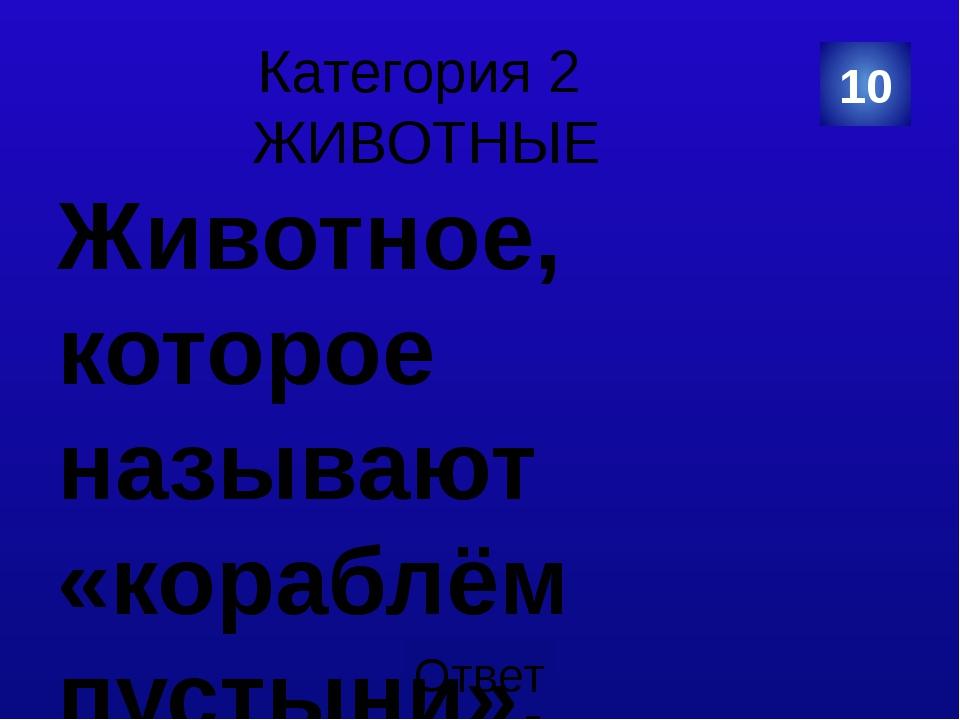 Категория 4 КУЛЬТУРА И ИСКУССТВО Мы давно блинов не ели… Какой славянский вес...