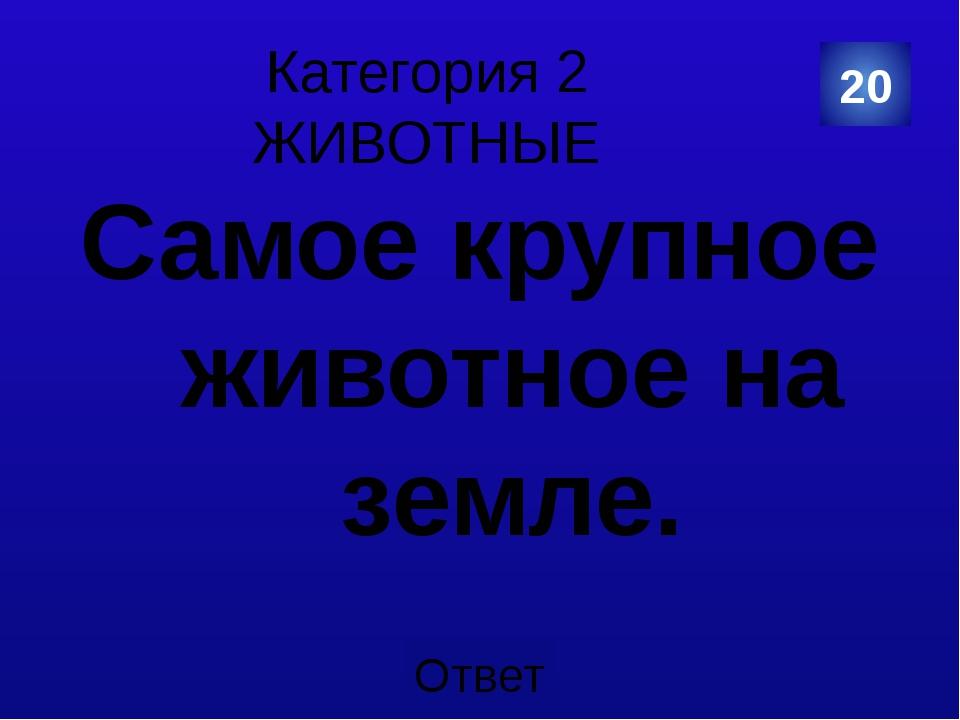 Категория 4 КУЛЬТУРА И ИСКУССТВО Этот символ России переписывали два раза. В...