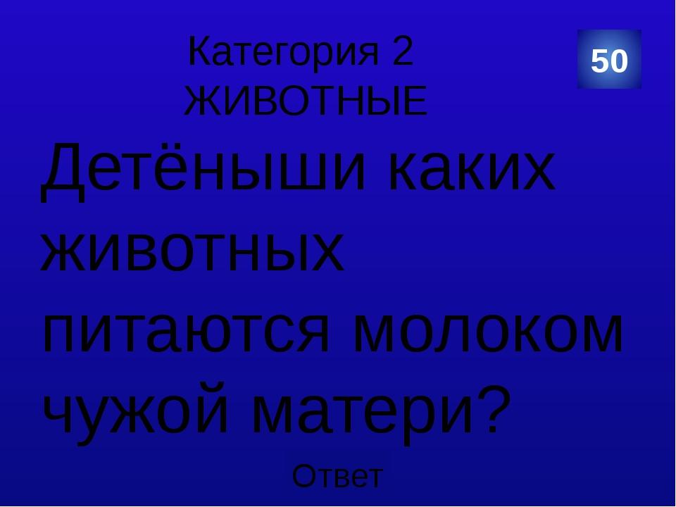 Категория 2 ЖИВОТНЫЕ 50 Категория Ваш ответ