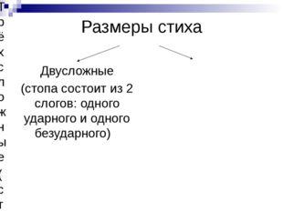 Размеры стиха Двусложные (стопа состоит из 2 слогов: одного ударного и одного