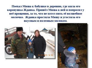 Поехал Миша к бабушке в деревню, где жила его коровушка Жданка. Пришёл Миша