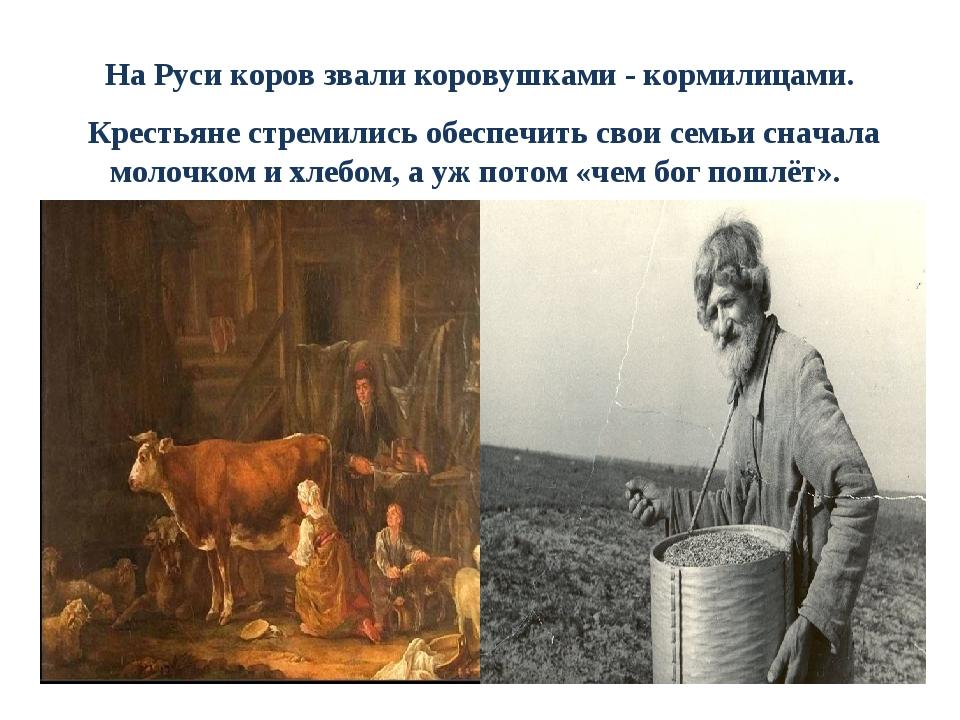 На Руси коров звали коровушками - кормилицами. Крестьяне стремились обеспечит...