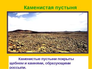 Каменистая пустыня Каменистые пустыни покрыты щебнем и камнями, образующими