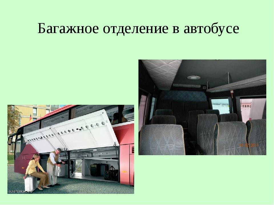 Багажное отделение в автобусе