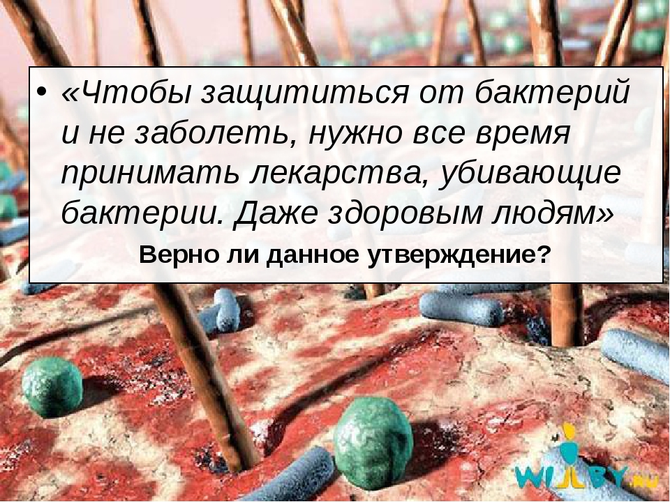 «Чтобы защититься от бактерий и не заболеть, нужно все время принимать лекарс...