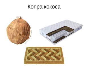 Копра кокоса