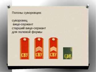 Погоны суворовцев: суворовец вице-сержант старший вице-сержант для полевой фо