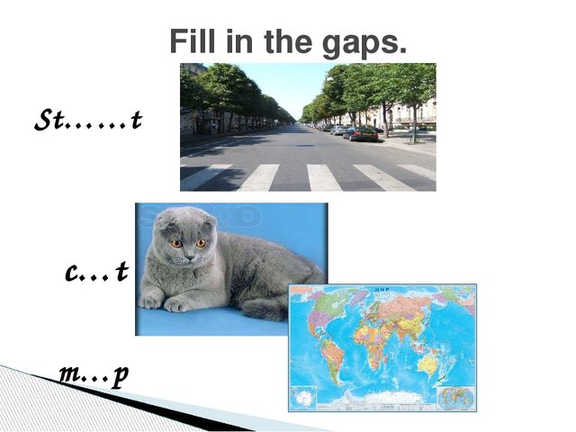 St……t Fill in the gaps. c…t m…p