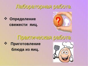 Лабораторная работа Определение свежести яиц. Практическая работа Приготовлен
