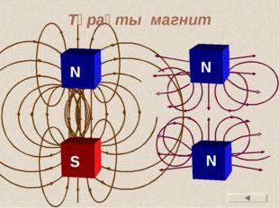 Тұрақты магнит S N