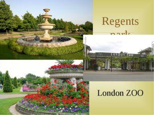 Regents park London ZOO 