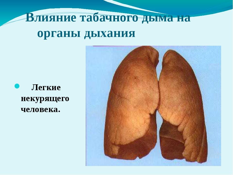 Влияние табачного дыма на органы дыхания Легкие некурящего человека.