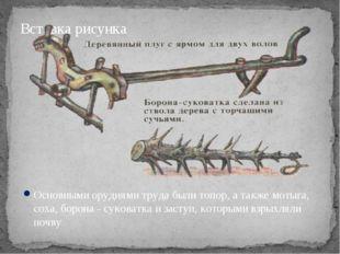 Основными орудиями труда были топор, а также мотыга, соха, борона ‑ суковатка