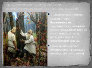 Кроме земледелия славяне занимались скотоводством, разводили свиней, коз, лош