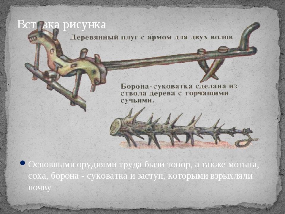 Основными орудиями труда были топор, а также мотыга, соха, борона ‑ суковатка...