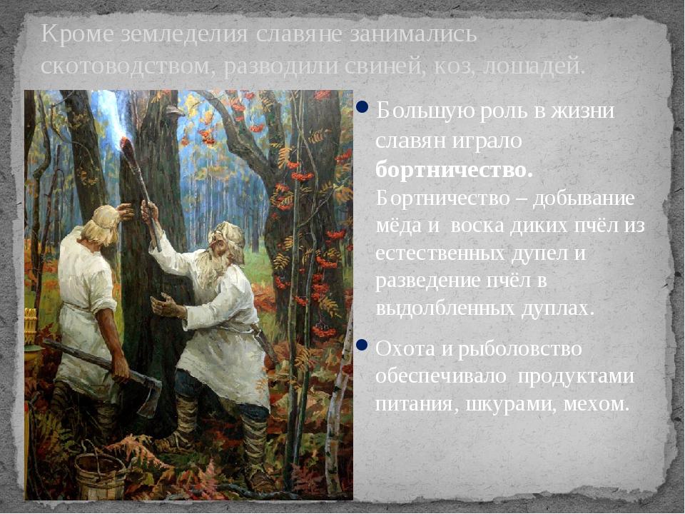 Кроме земледелия славяне занимались скотоводством, разводили свиней, коз, лош...