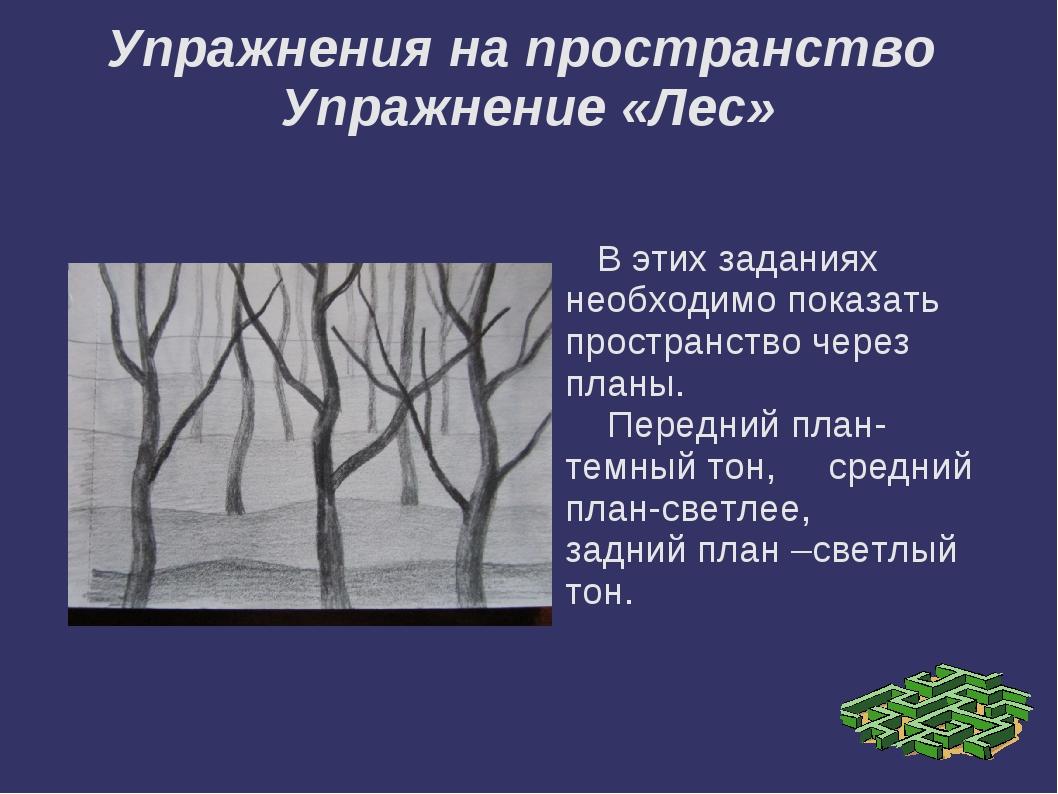 Упражнения на пространство Упражнение «Лес» В этих заданиях необходимо показа...
