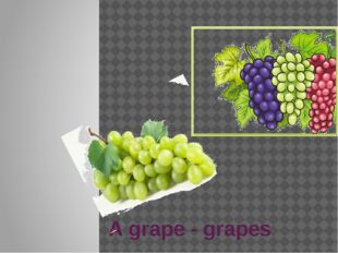 A grape - grapes