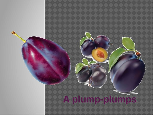 A plump-plumps